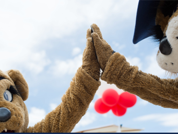 Picture of UArizona Wilber and Wilma giving high five.